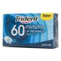 TRIDENT 60 MINUTES PEPPERMINT CHEWING GUMS
