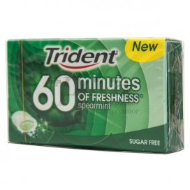 TRIDENT 60 MINUTES SPEARMINT CHEWING GUMS