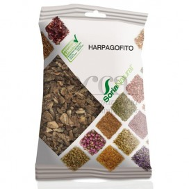 HARPAGOPHITO 100GR R.02112