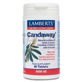 CANDAWAY 60 TABLETTEN LAMBERTS