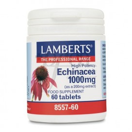 ECHINACEA 1000MG 60 TABLETTEN LAMBERTS