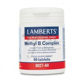 METHYL B COMPLEX 60 COMPS