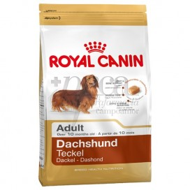 ROYAL CANIN DACHSHUND ADULT 1,5 KG