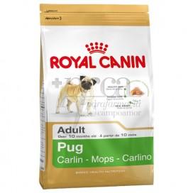 ROYAL CANIN PUG ADULT 3 KG