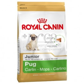 ROYAL CANIN PUG JUNIOR 1,5 KG