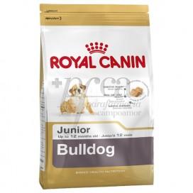 ROYAL CANIN BULLDOG JUNIOR 3 KG