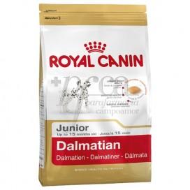 ROYAL CANIN DALMATIAN JUNIOR 12 KG