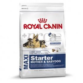 ROYAL CANIN MAXI STARTER 4 KG
