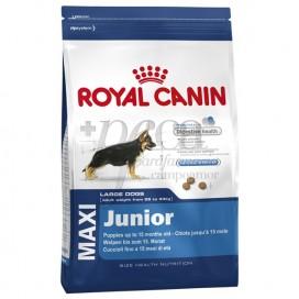 ROYAL CANIN MAXI JUNIOR 15 KG
