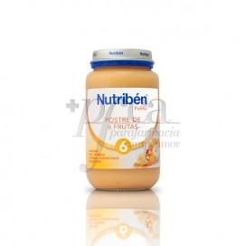 NUTRIBEN POSTRE DE 6 FRUTAS  250 G