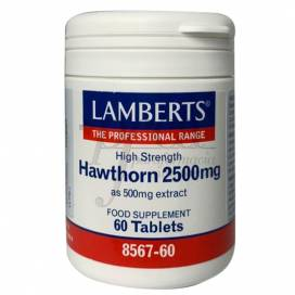 HAWTHORN 2500MG 60 TABLETTEN LAMBERTS