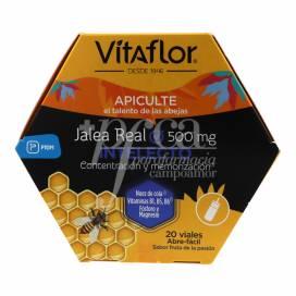 VITAFLOR GELEIA REAL INTELECTO 500MG 20 FRASCOS 10 ML