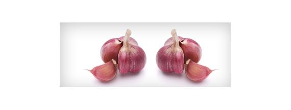 Vasoprotektive Kräuter