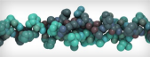 Aminosäure-Stoffwechsel