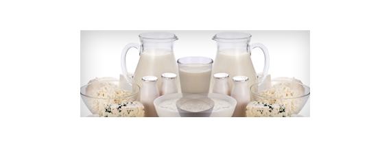Milchprotein und Milchgerinnungs