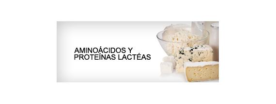 Aminoácidos e proteínas lácteas