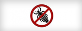 Pedikulozide oder Anti-Läuse