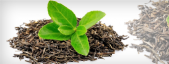 Diuretic plants