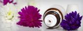Parafarmacia homeopática